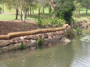 Coir logs used as a natural erosion control